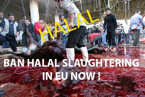 ban_halalslaughtering.jpg